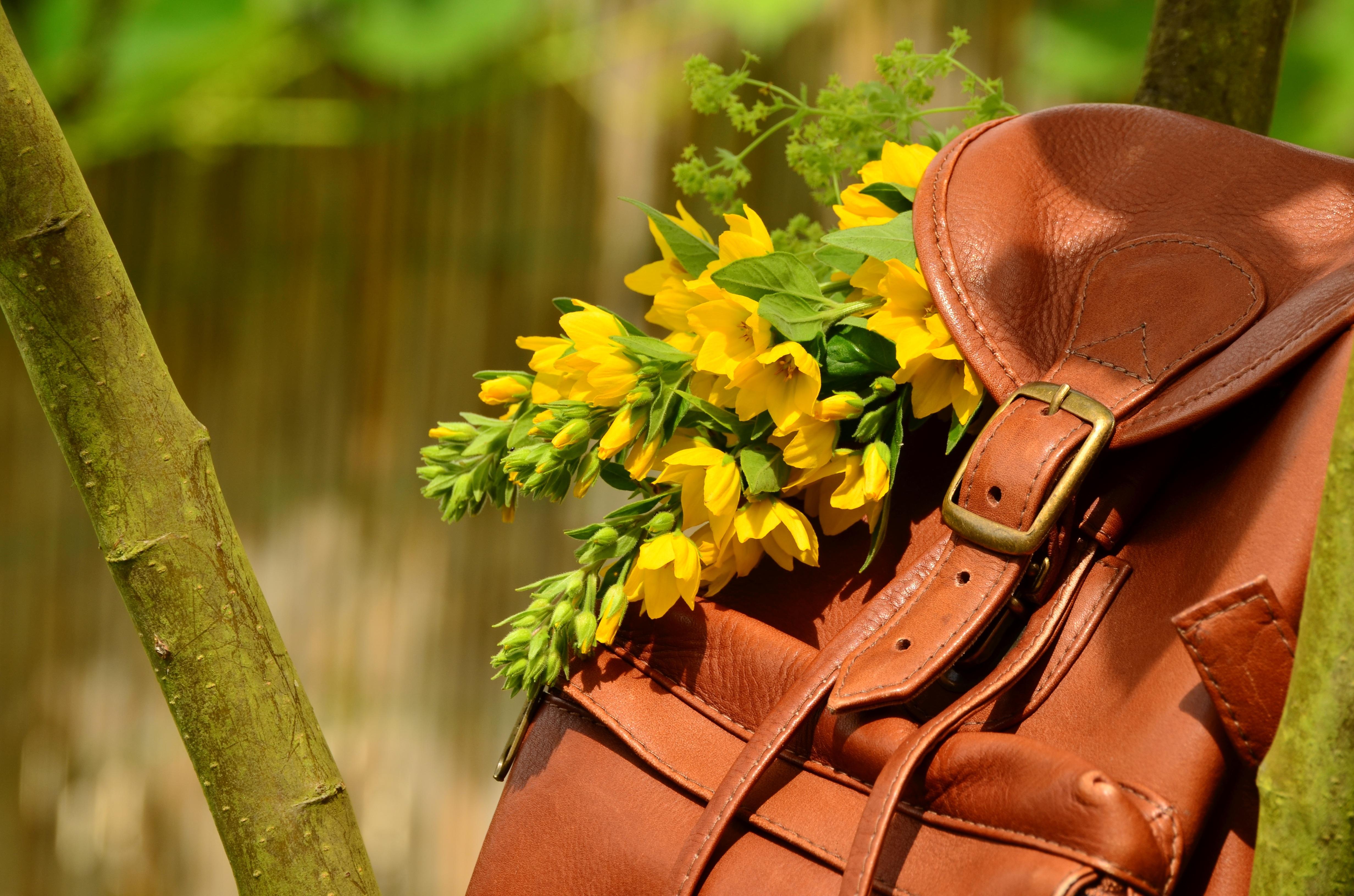 Backpack 1482612 original 363471