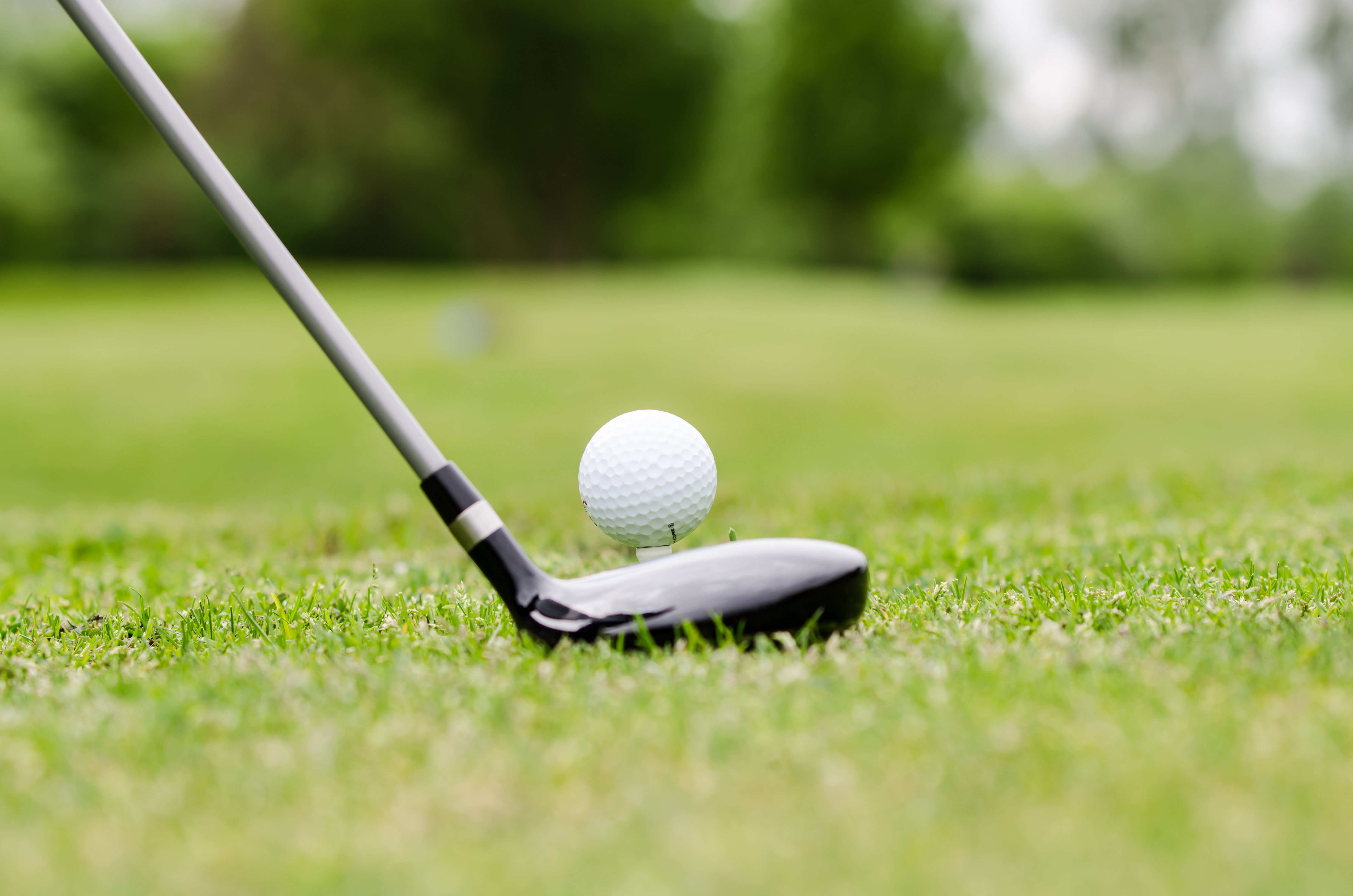 Adobestock 52362055 golf1