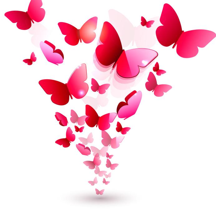 Schmetterlinge original 148408